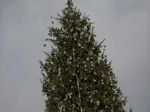 Cel mai mare brad de Crăciun din lume. Foto: MEDIAFAX