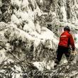 Salvamontiştii dorneni au muncit jumătate de zi pentru a redeschide traseul spre cabana şi vârful Giumalău