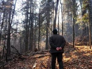 Un pădurar se teme pentru viaţa lui după ce a fost ameninţat de un hoţ cercetat în libertate, sub control judiciar
