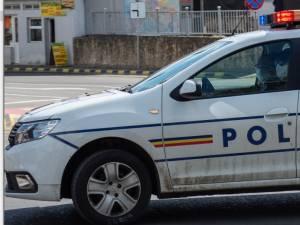 Polițiști din București și nouă județe acționează în Suceava pentru combaterea tăierilor ilegale de arbori