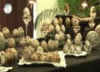 """""""Timpul Sărbătorii"""", la Centrul pentru Susţinerea Tradiţiilor Bucovinene"""